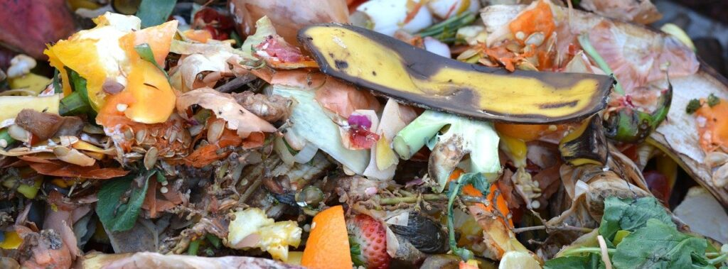 compost, fruit and vegetable waste, composting
